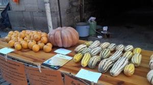 20161029-saint-antonin-fete-citrouille